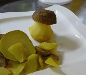 Kartoffelpilz