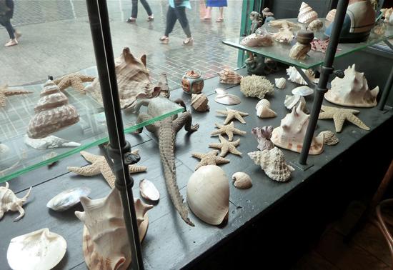 Museum mit Schaufenster
