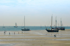 Blick auf die Sandbank vor Terschelling