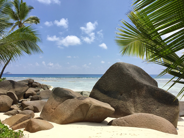 Strand von Silhouette