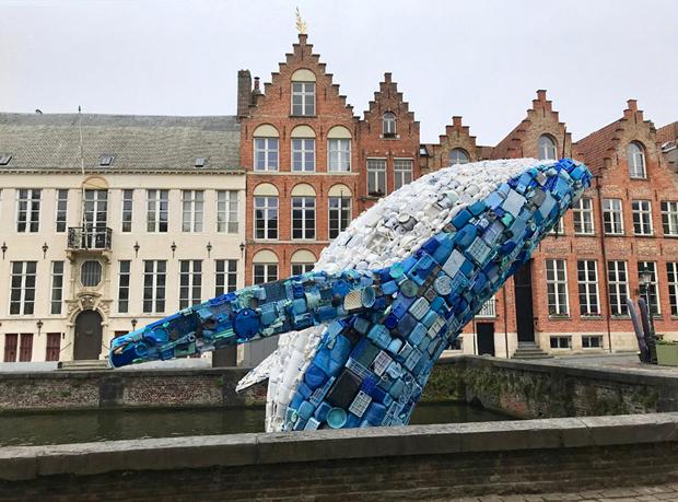 Walfisch in Brügge