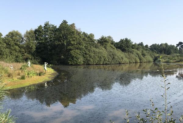 Waldspaziergang im Landgoed de Utrecht